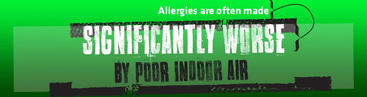 Pollen Indoor Air Quality